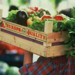 agricolturasito